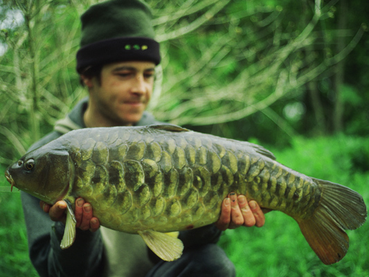 Terry Hearn Carp Fishing - Pineapple